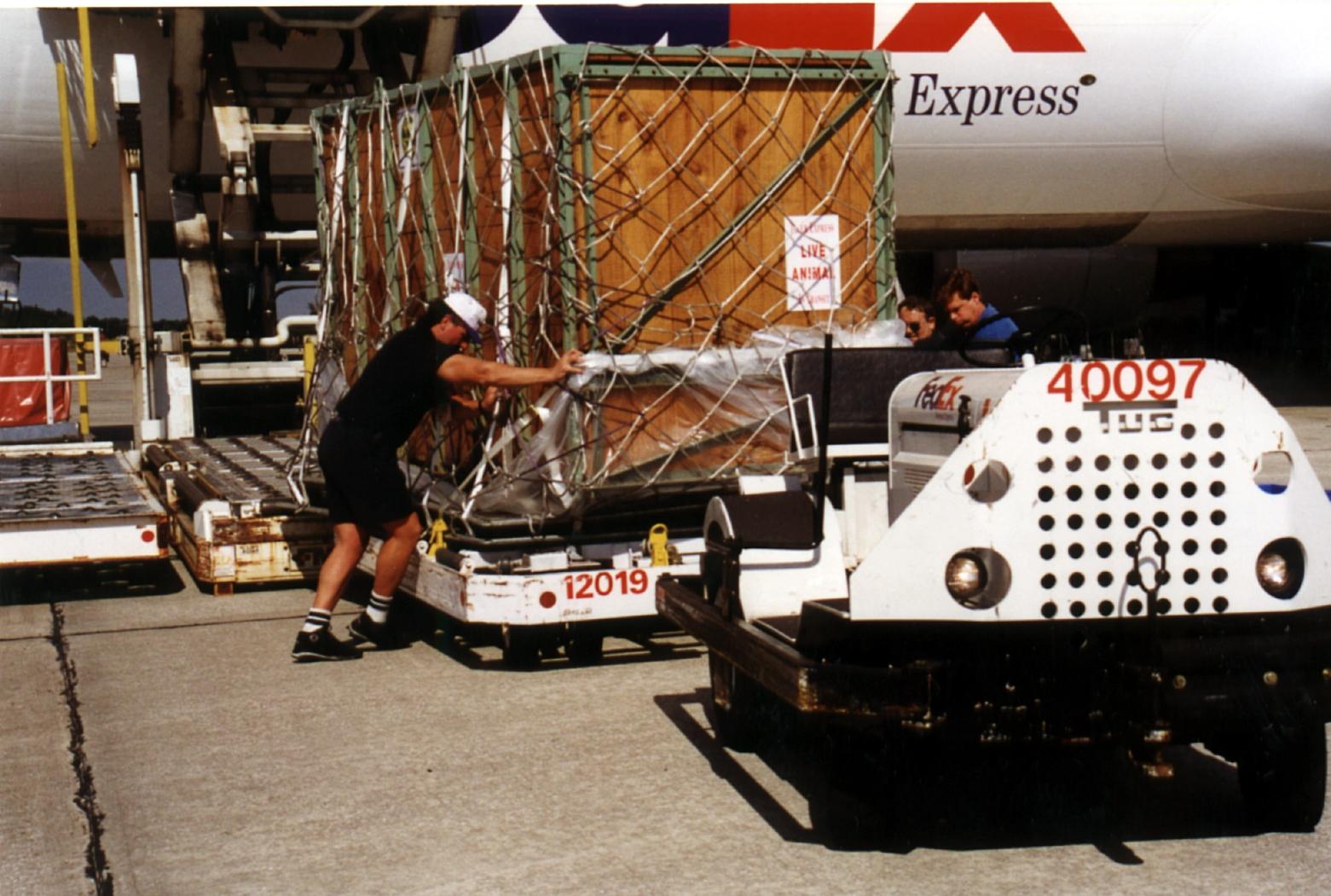 Unloading Cargo